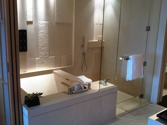 Park Hyatt Beijing: Supersized bath and shower