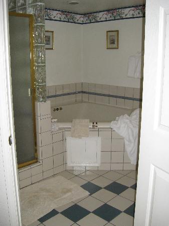 Barewood Inn & Suites: Rm 10