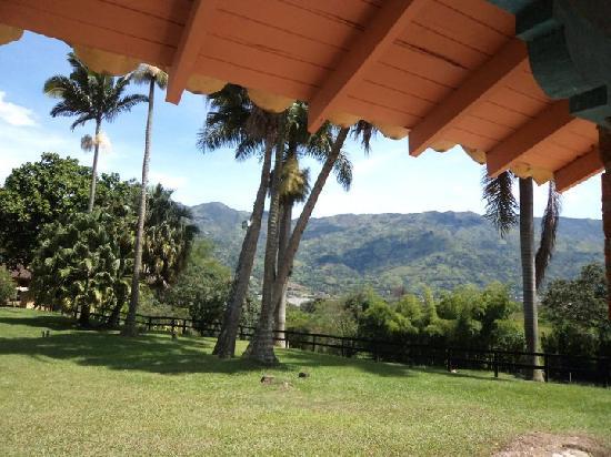 Palma Bella Hotel Spa: Verde Nacional !