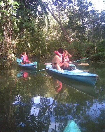 Lapamar: Tour en kayak