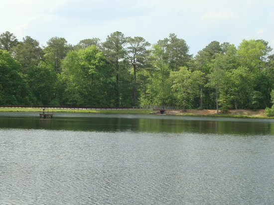 Warm Springs, GA: View from the cabin