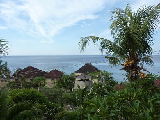 Bayu Cottages Hotel and Restaurant : view from room