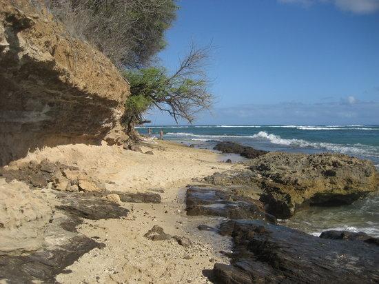 Diamond Head (Cabeza de Diamante): Beach Entrance