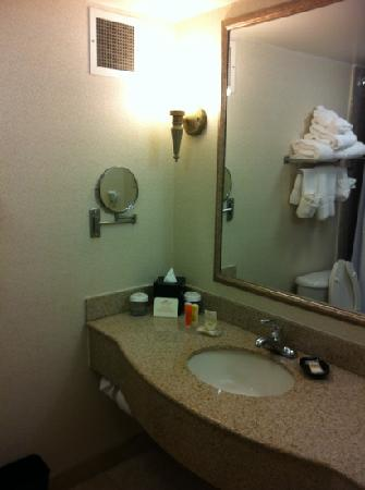 Crowne Plaza Hotel Virginia Beach -Town Center: the bathroom was nice and clean.