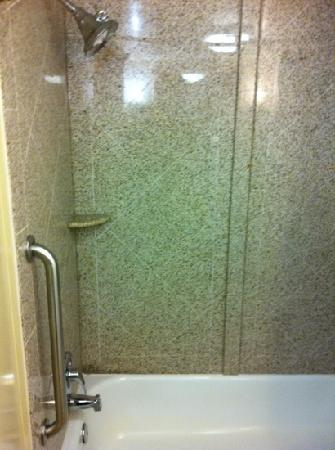Crowne Plaza Hotel Virginia Beach -Town Center: nice shower. if you need to use the toilet you have to basically close the br door. the door ope