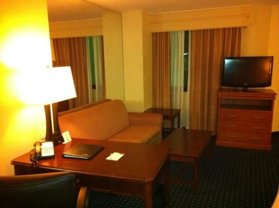 Crowne Plaza Hotel Virginia Beach -Town Center: couch is old and stained. tv is nice and big. mirror is awkward.