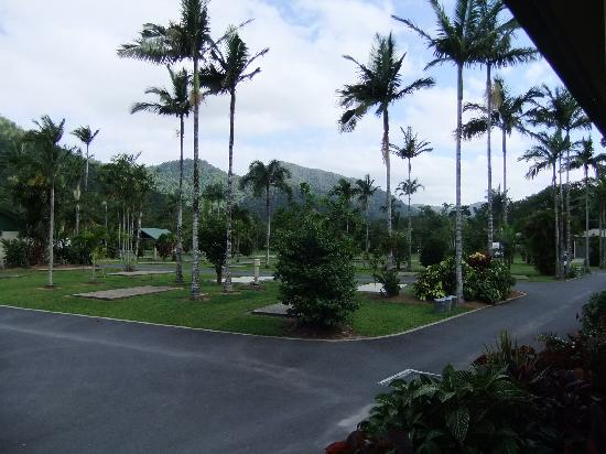 BIG4 Cairns Crystal Cascades Holiday Park : Picturesque views