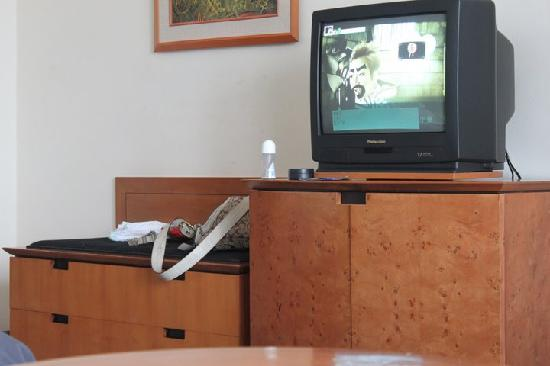 Allium Batam Hotel: Small TV