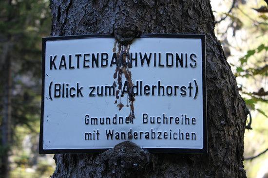 Kaltenbachwildnis