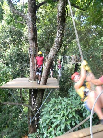 Bastimentos Sky Zipline Canopy Tour: Tarzan?  E chi è?!?! Nessuno!!!