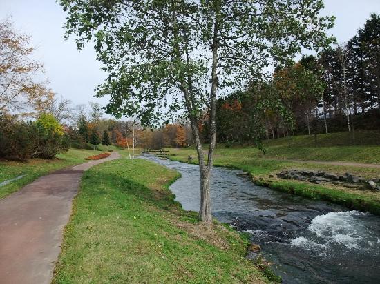 Makkarigawa Kasenkoen : 川沿いの散歩コースです。