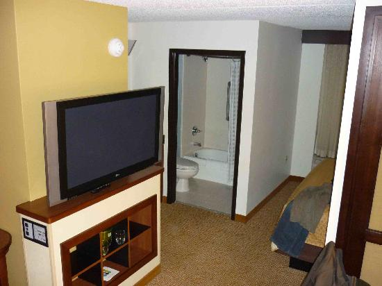 Hyatt Place Detroit/Livonia: TV