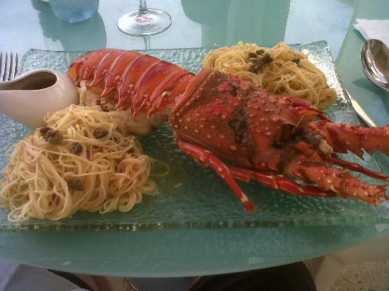 DCO Gourmet Restaurant: Langosta