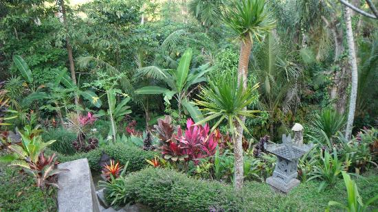 Uma Agung Villas: le jardin