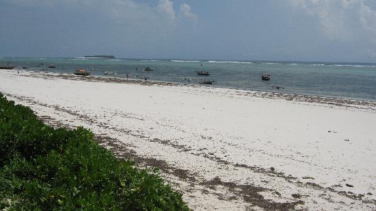 Mitende EasyAfrica Club: la meravigliosa spiaggia