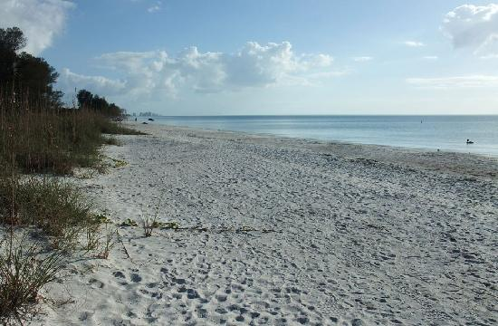 Delnor-Wiggins Pass State Park: Beach looking South