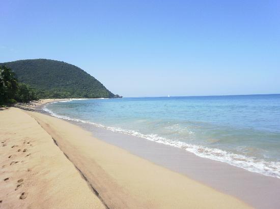 Le Rotabas: Grosses Strand am Deshaies