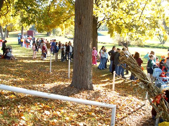 Kearsley Park: Line for carriage rides