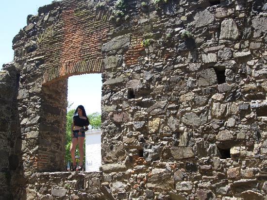 Granja Colonia: Modelo en Ruinas
