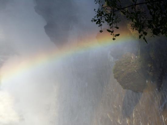 Cataratas del Iguazú: Sin palabras!!!