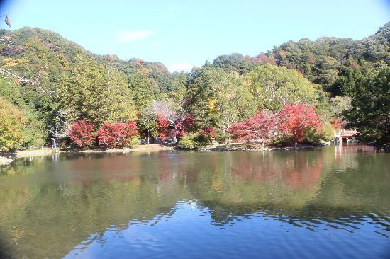 Shiramizu Amidado: 池