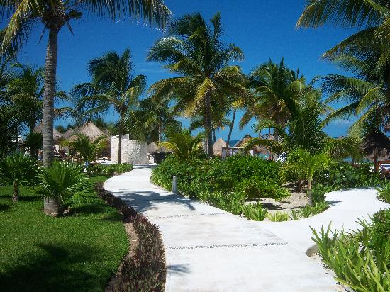 Excellence Playa Mujeres: Beautiful, well kept grounds
