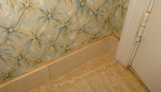 Disney's Grand Floridian Resort & Spa: Mold and Yuck in bathroom...