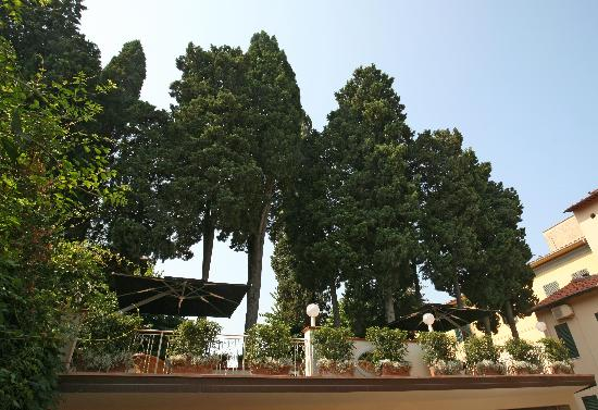 Bologna Hotel Pisa: Terrace