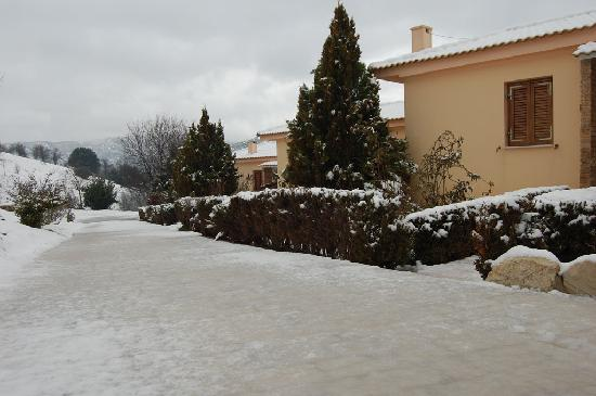 Finday Suites Eco Boutique Hotel: snowing in Finday's Hotel  garden