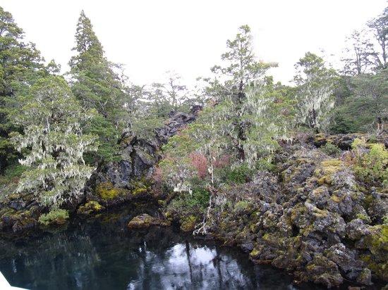 Σαν Μαρτίν ντε λος Άντες, Αργεντινή: El Escorial y El Bosque de los Enanos