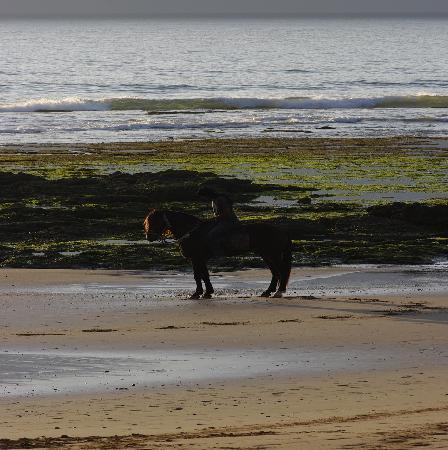 Cap Sim House: équitation sur la plage