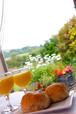 Arkleside Country Guest House: Breakfast with a view!
