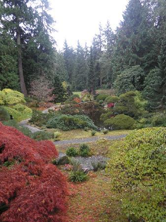 Bloedel Reserve: Japanese garden view