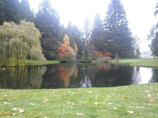 Bloedel Reserve: Pond