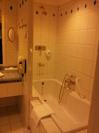 MJ's Hotel: Bathroom pic 1