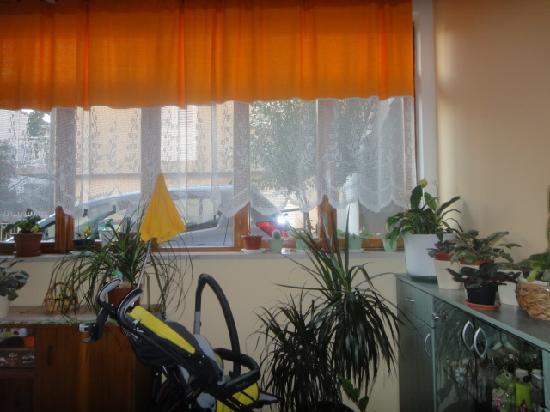 Apartments Alagic : lobby