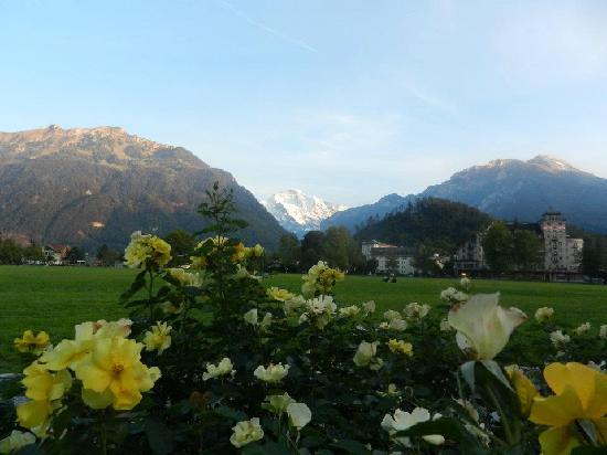 Balmer's Hostel: Interlaken
