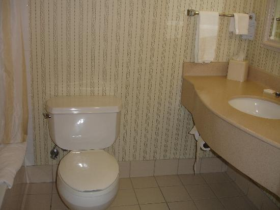 Hilton Garden Inn Portland/Lake Oswego: Bathroom