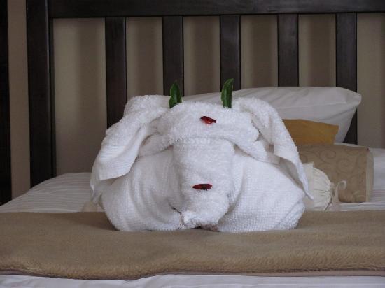 AfricaSky Guest House: Elefanten-Handtuch