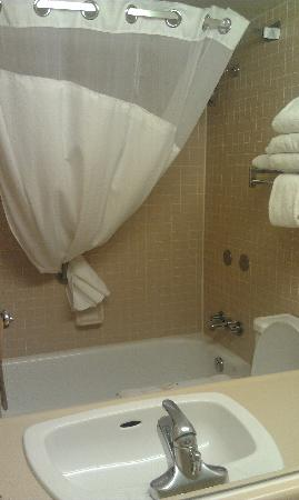 Holiday Inn Kitchener: bathroom