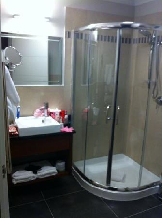 City Corporate Motor Inn : Bathroom - Traveller Studio