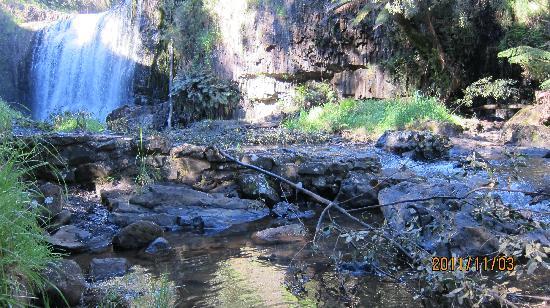Tasmania I Drive: Guide Falls
