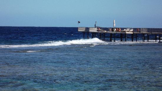 SuneoClub Reef Marsa: Reef & jetty