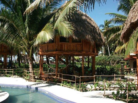 Hotel Tortuga Village: Cabin