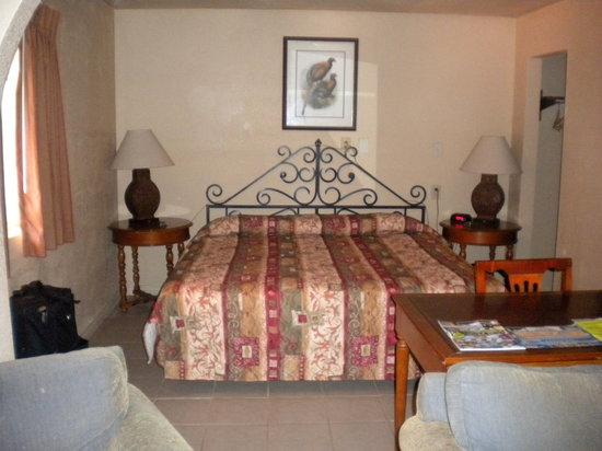Cedar Sands Motel: King suite, very spacious!