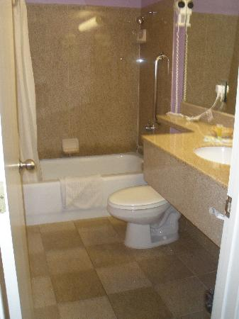 Siegel Suites Select Convention Center : the bathroom