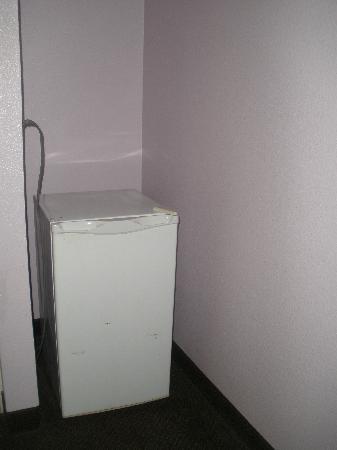 Siegel Suites Select Convention Center: the mini fridge