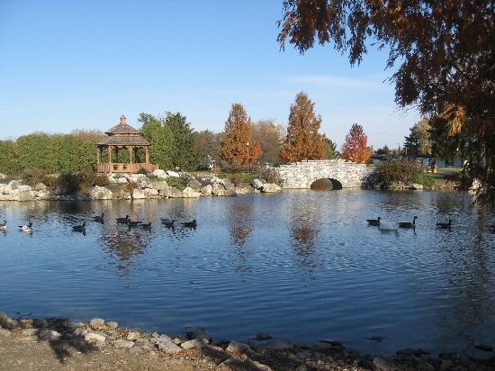 Hampton Inn Lancaster: Pond at Fitness Park
