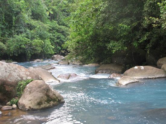 Cabinas Piuri: The Rio Celeste, right behind the cabinas
