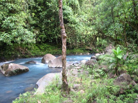 Cabinas Piuri: The Rio Celeste, right behind the cabinas